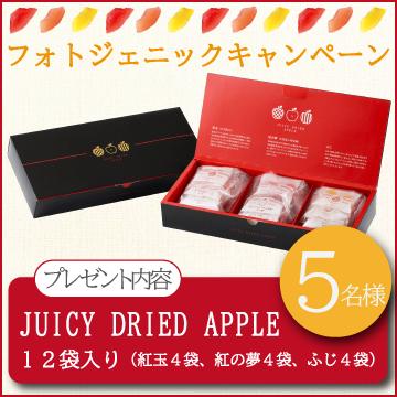 【フォトジェニックキャンペーン】青森県産ドライアップル3種アソート【5名様】